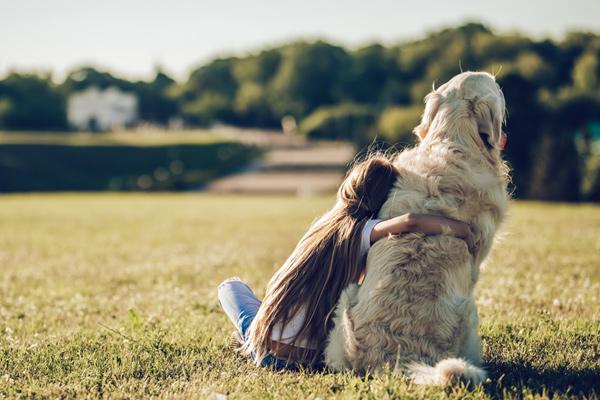 el adiós al perro